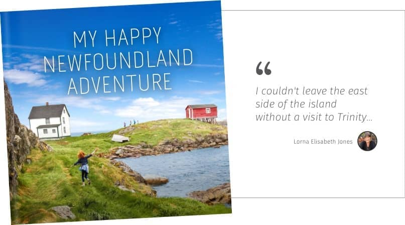 My happy newfoundland adventure