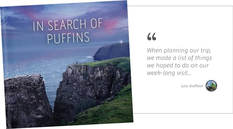 In search of puffins