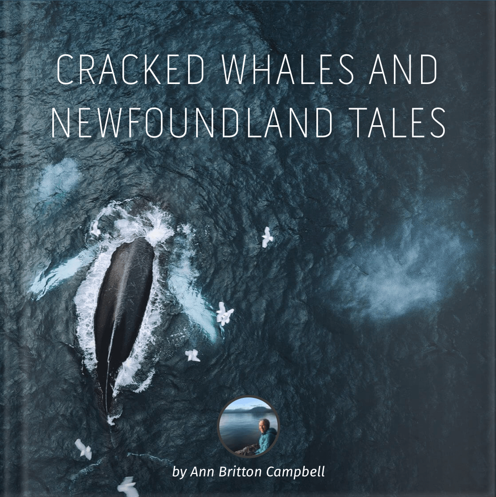 Cracked Whales And Newfoundland Tales