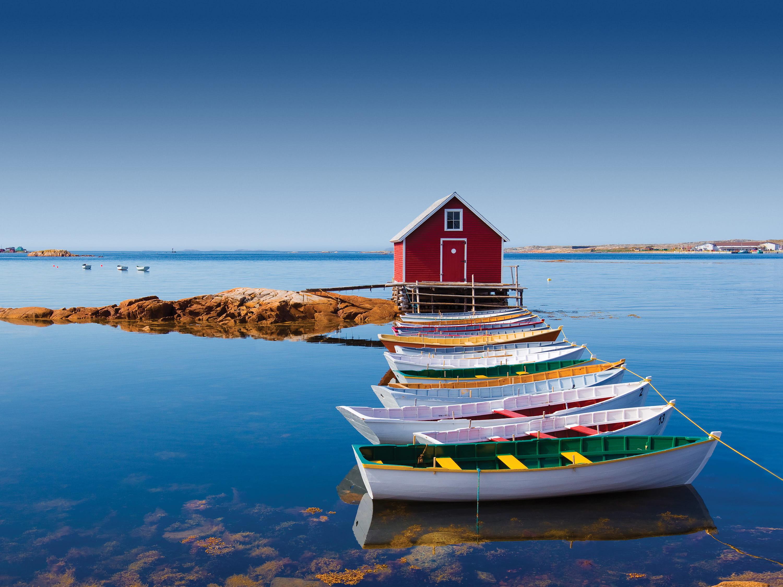 Bay Bulls Newfoundland Boat Tours