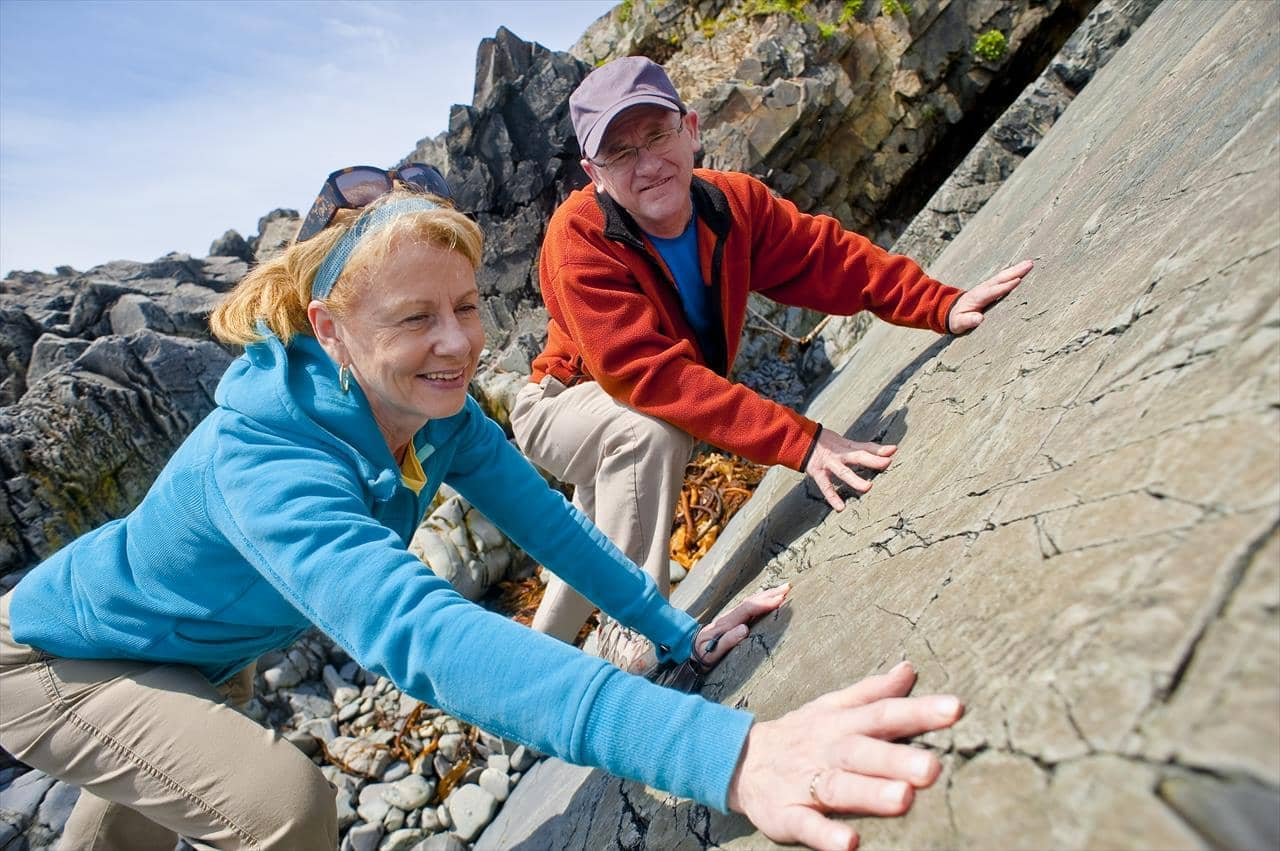 Mistaken Point Fossils and Hands