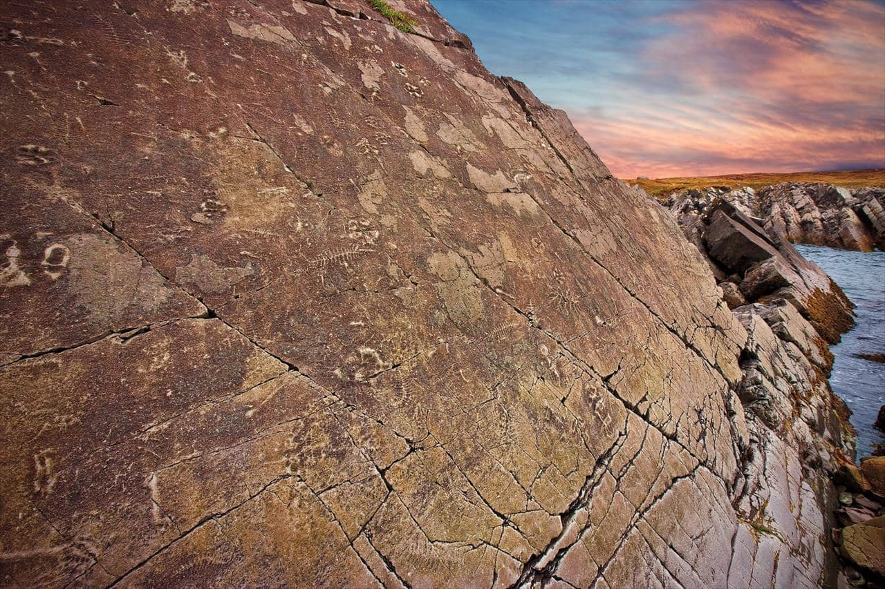 Mistaken Point, Fossils and Sky