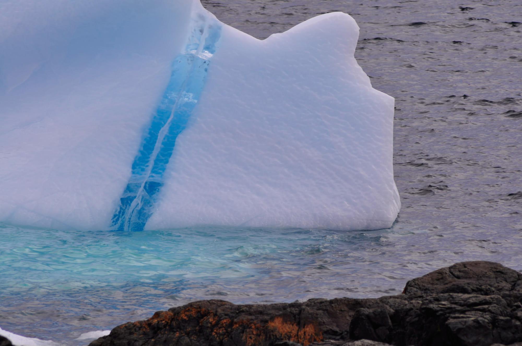 Iceberg Tours Newfoundland