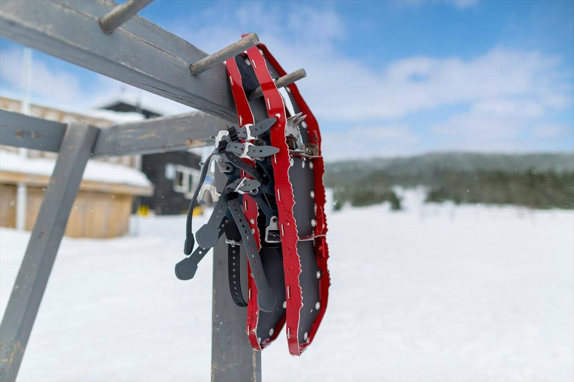 Snowshoes hanging