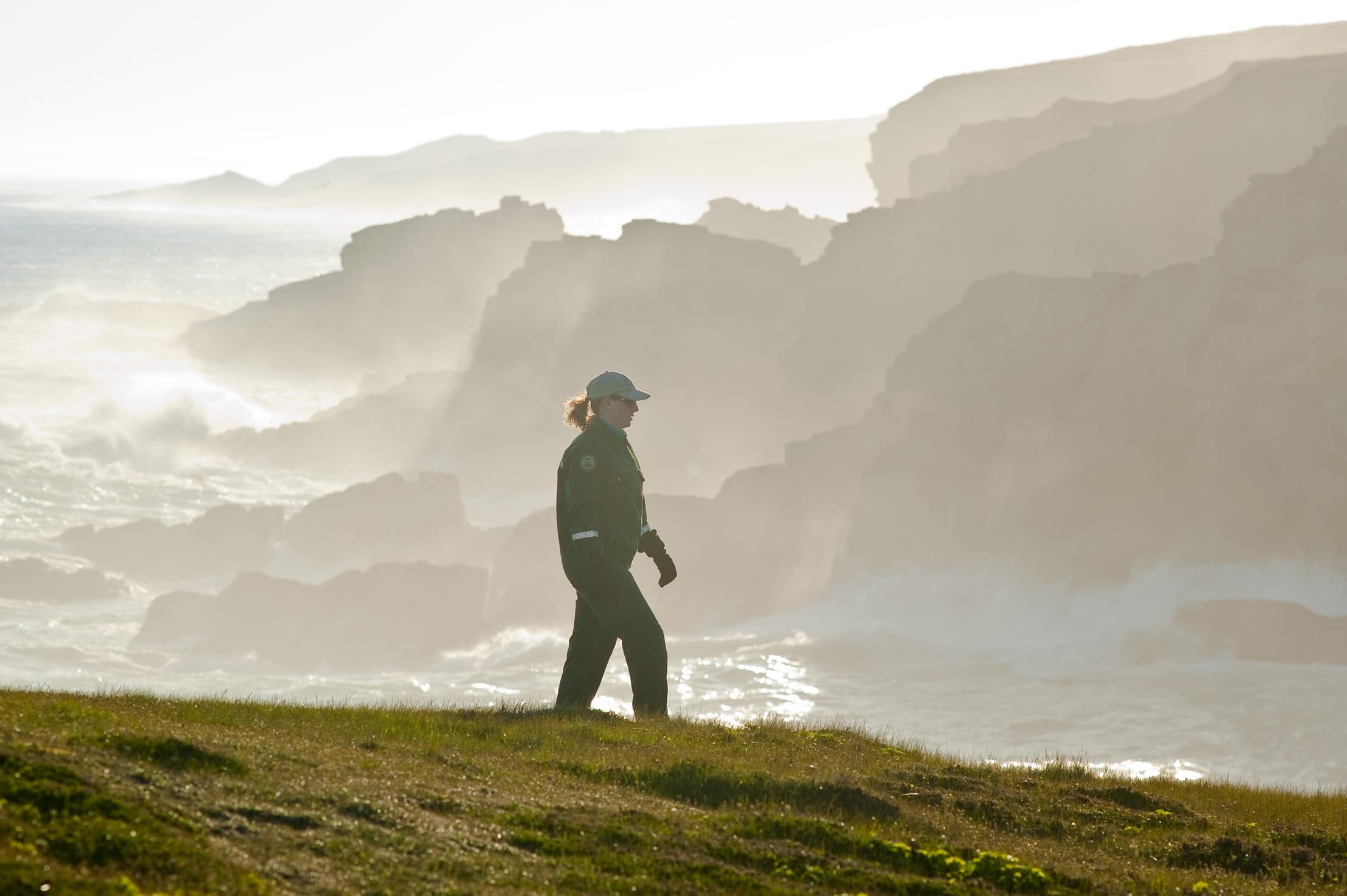 Tour Guide Near Coastline of Mistaken Point Ecological Reserve, Avalon