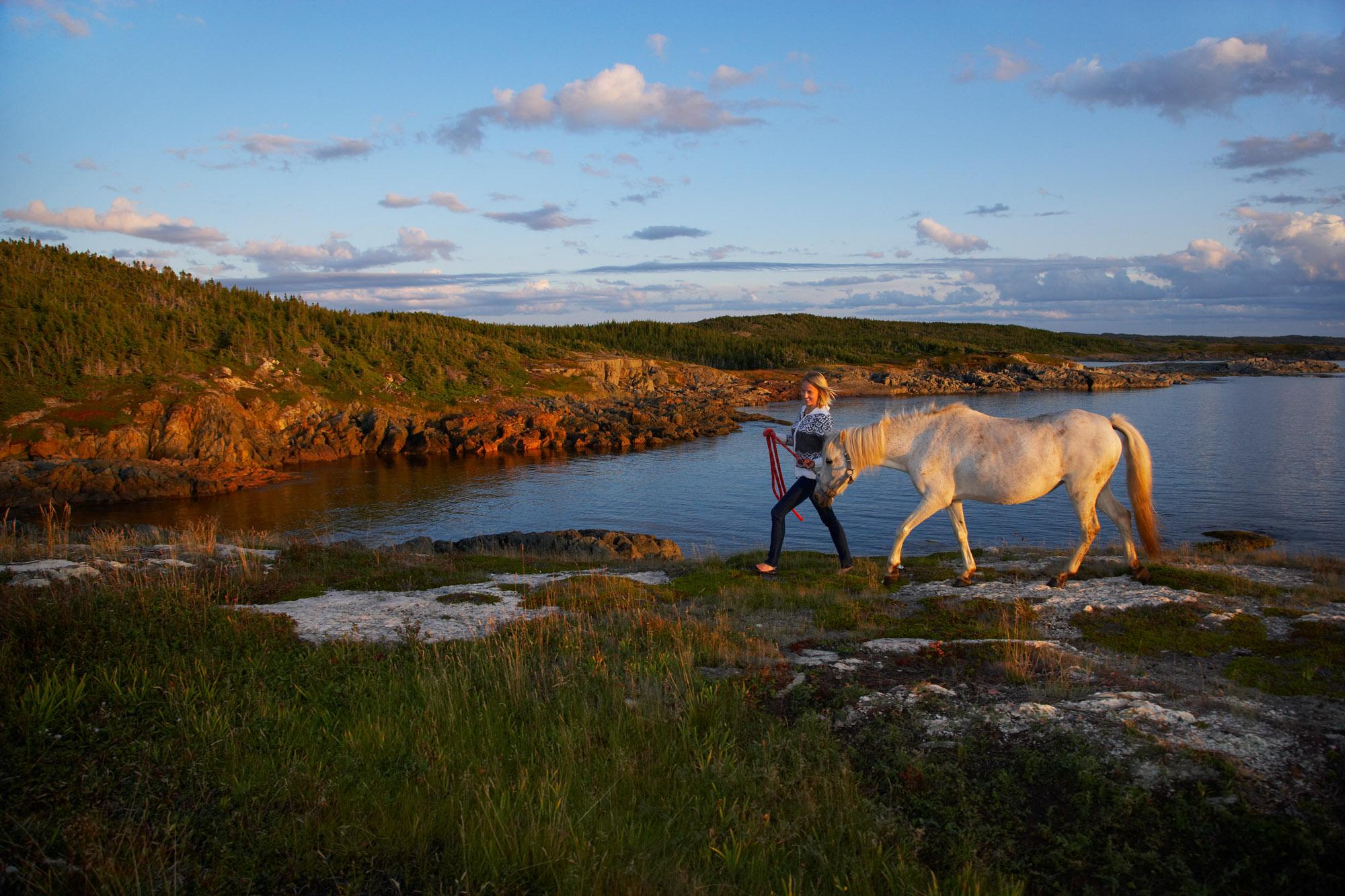 Change Island white horse