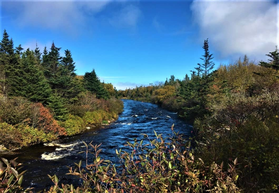 Horse Brook Walking Trail in Fortune, Newfoundland and Labrador