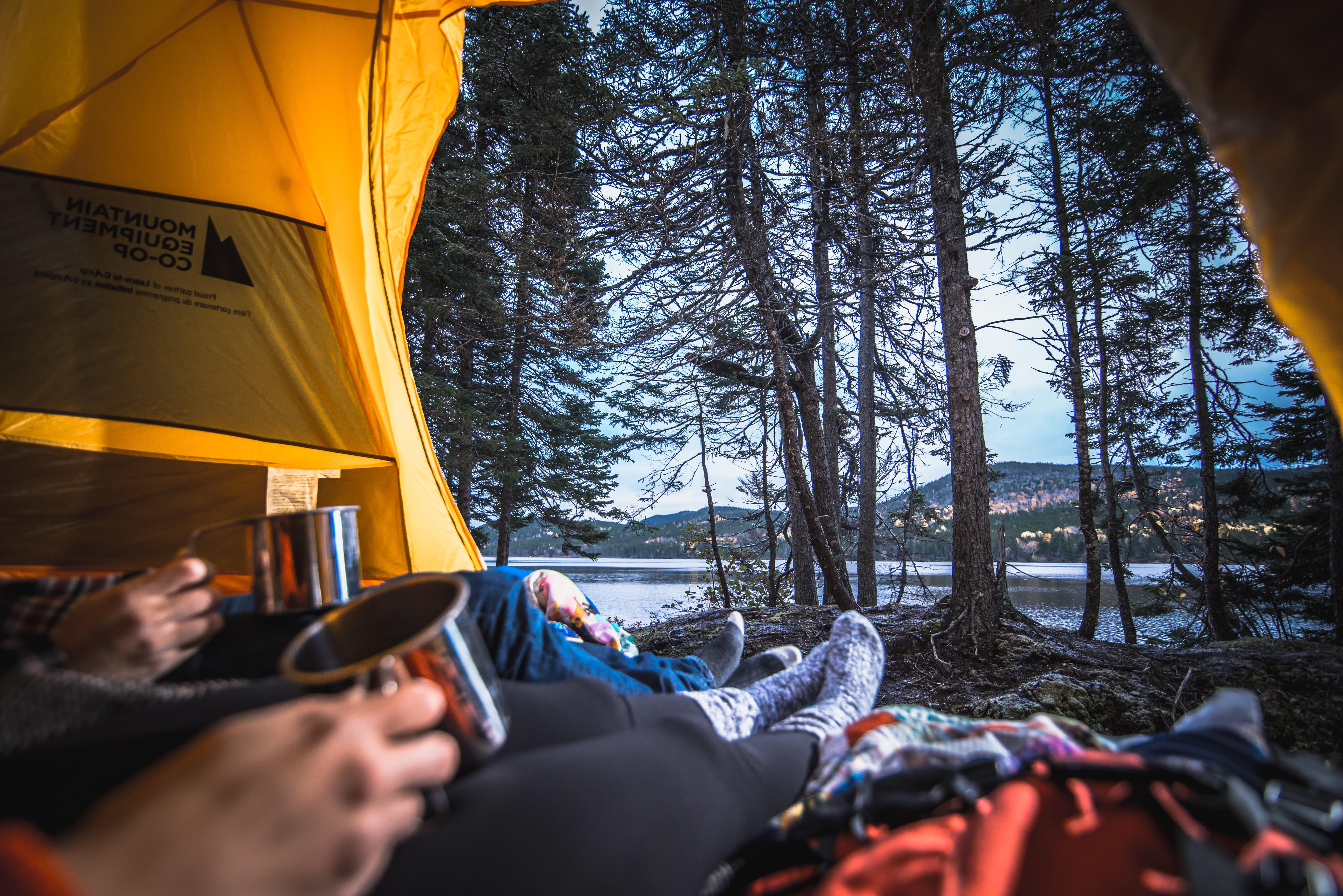 Morning Glory at Campsite at  Terra Nova National Park