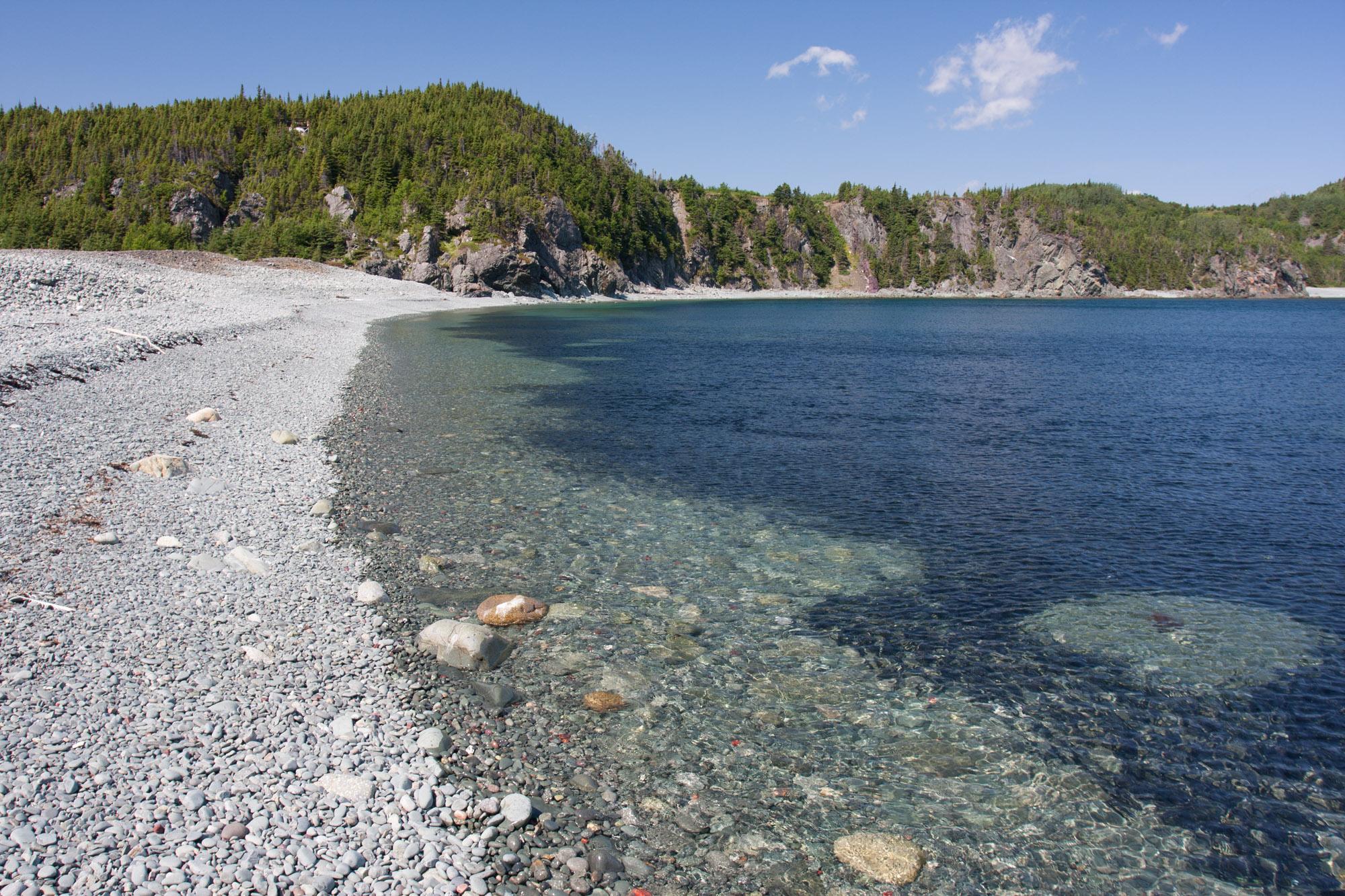 Capelin rolling beach
