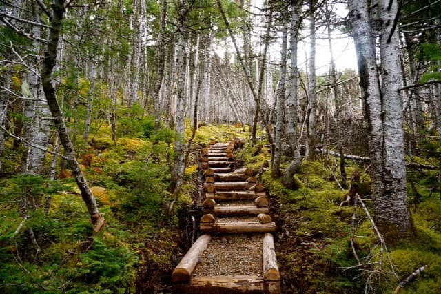 Gun Hill Hiking Trail, Newfoundland and Labrador